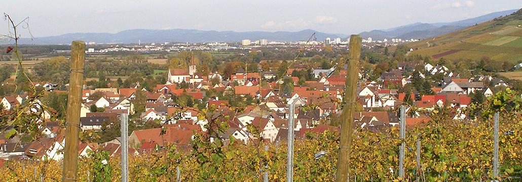 ferienwohnung kaltenbachhof blick richtung freiburg